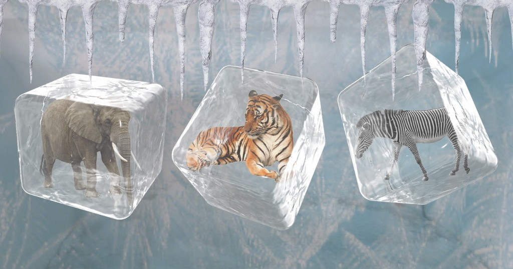 This 'Frozen Zoo' Could Bring Extinct Animals Back To Life